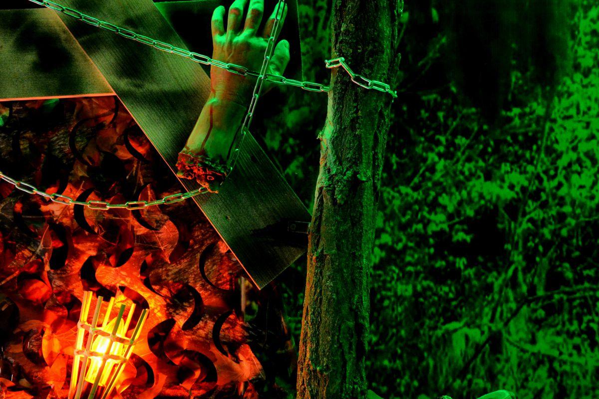 2 Фото квест кімнати Вендиго - Демон лісу в місті Дніпро