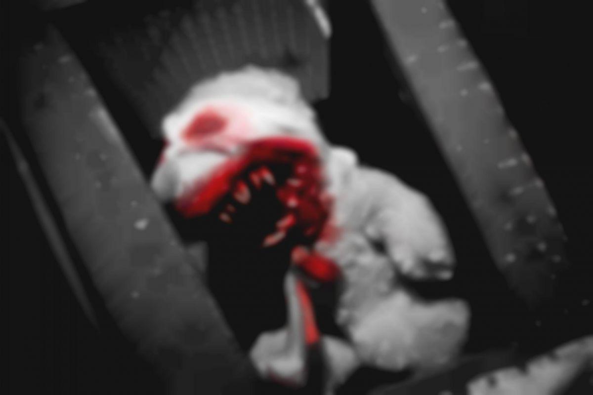 2 Фото квест комнаты Мрак. Миссия в темноте в городе Днепр