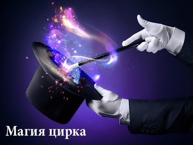 Фото квест комнаты Магия цирка в городе Киев