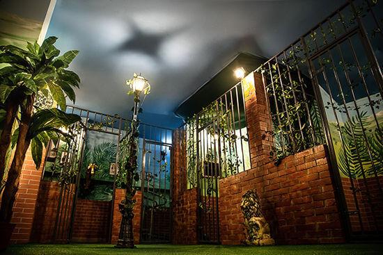 Картинка квест комнаты Мадагаскар в городе Хмельницкий