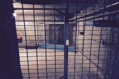 Картинка квест комнаты Убежище 101 в городе Днепр